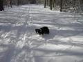 ...der erste Schnee...