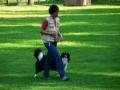 ...mit seinen nun 9 Monaten hat Monty auf dem Hundeplatz bei den Übungsstunden sehr viel Spaß...
