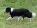Nash mit 2 Jahren, im Sommer 2012