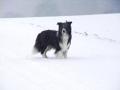 ...und schon ist es wieder Winter (Schwäbische Alb 2012/13)...