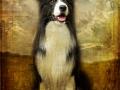 ...ein ganz besonderes Bild von unserem Freund Bernd aus Österreich...